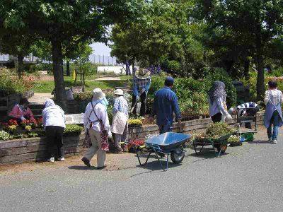 【常時】浜名湖ガーデンパーク ふれあい花壇ボランティア