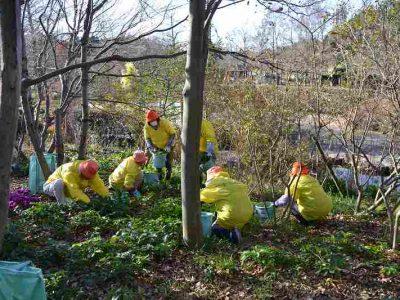【常時】浜名湖ガーデンパーク 花・緑ボランティア
